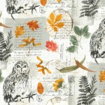 WISE OWL COLLAGE