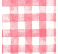 PAINTED GINGHAM