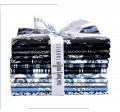 BEGINNINGS IN BLUE FAT 1/4 BUNDLE 12pcs -comes in a case of 3