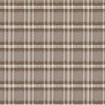 WOOLY PLAID