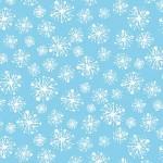 SNOW DROPS ON MINKY