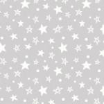 DOTTY STAR ON MINKY
