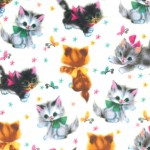 KITTIES on MINKY - Contact your account manager to purchase this item