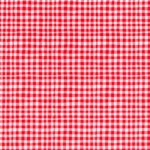 TINY GINGHAM on MINKY