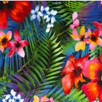 TROPICAL DREAMS on MINKY
