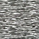 ZEBRA SKIN on MINKY