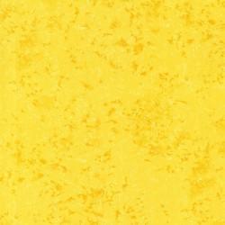 COLOR: SUNNY