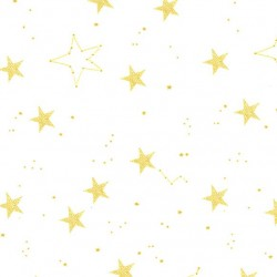 LUCKY STARS on MINKY- Contact your account manager to purchase this item