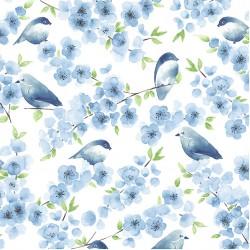 BLUEBIRD FAMILY ON MINKY