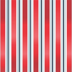 LIBERAL STRIPES on MINKY- Contact your account manager to purchase this item
