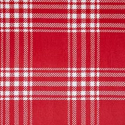 TREAS PLAID on MINKY- Contact your account manager to purchase this item