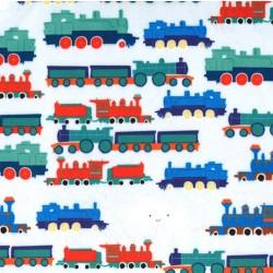 WACKY TRAINS on MINKY