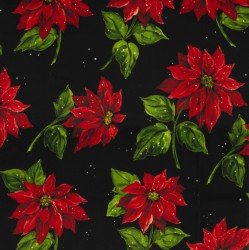 POINSETTIA IN THE SNOW on MINKY