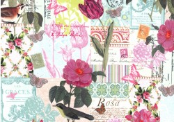 BELLE ROSE on MINKY- Contact your account manager to purchase this item