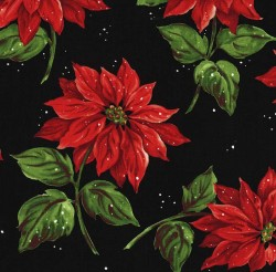 POINSETTIA IN THE SNOW