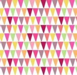 COLORFUL CONES on MINKY