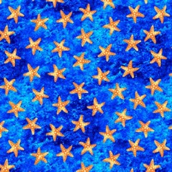 STARS OF THE OCEAN ON MINKY