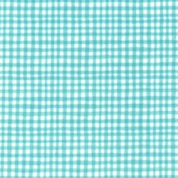 GINGHAM PLAY ON MINKY
