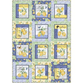 "Block Talk Quilt by Swirly Girls Design /40""x57"""