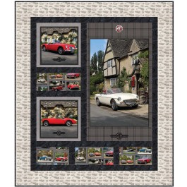 """race fan Quilt by Christine Stainbrook / 53""""x62"""""""