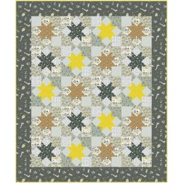"Star Struck Quilt by Swirly Girls Design /60""x72"""