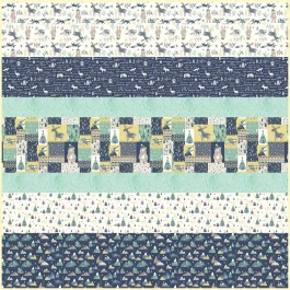 Wild and Free MINKY Strip Quilt