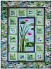 "Frog prince Quilt by Marinda Stewart /40""x54"""